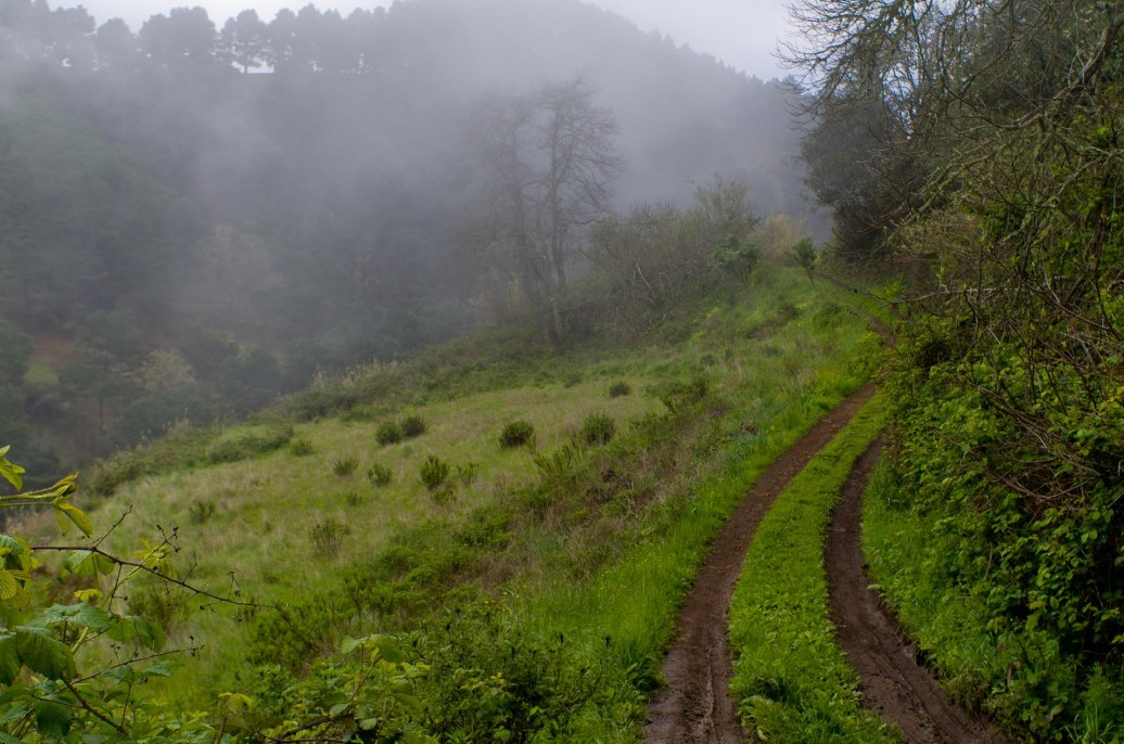 Subida de Barranco del Pinar a Pavón