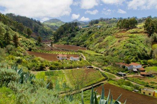 Paisaje entre Llanos del Pino y La Jurada