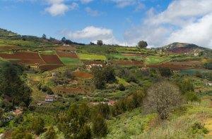 Vistas entre Llanos del Pino y La Jurada