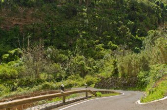 Barranco del Laurel