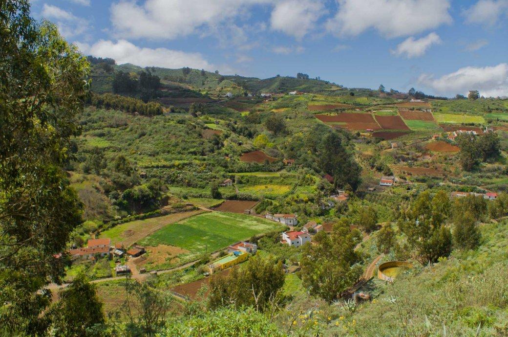 Llanos del Pino