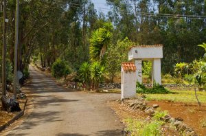 Camino San Fernando
