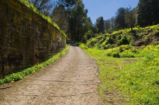 Camino El Valle
