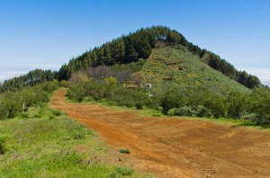 Montaña de Pajarito