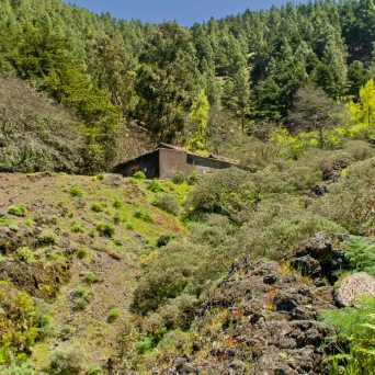 Pozo Cortijo de Piletas